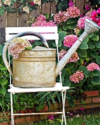 Antique French Zinc Shabby Country Watering Can
