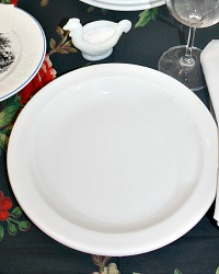 White Ironstone Plate Set of 5