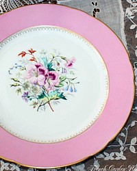 Antique Pink Old Paris Floral Gilt Cabinet Display Plate
