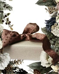 Parisian Bonbon de Chocolat French Wired Ribbon