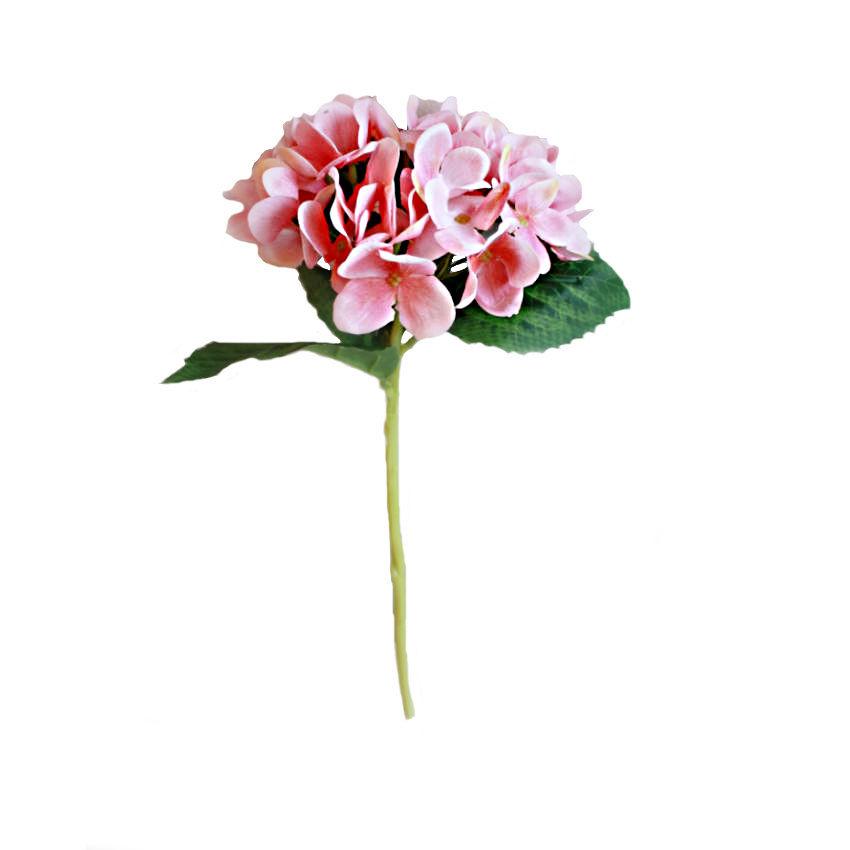 Soft Pink Hydrangea Stems Bunch of 5