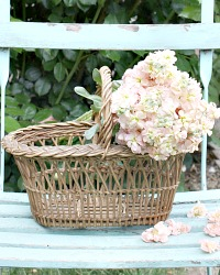 Antique French Country Child's Panier Market Basket