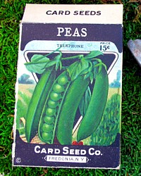 Vintage Old Store Stock Peas Seed Box