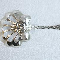 Antique Sterling Bonbon Spoon Server Flowers