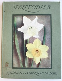 Estate Antique Gardening Book Daffodils with Color Plates
