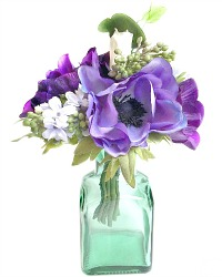 French Anemone Violette