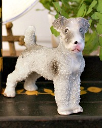 Vintage Curly Wire Haired Grey Porcelain Terrier