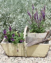Antique French Trug Wooden Garden Basket