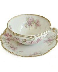 Antique French Limoges Pink Wild Rose Tea Cup & Saucer Set