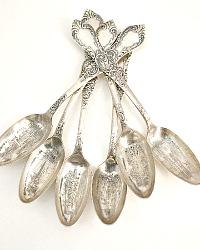 Antique Silver Souvenir Citrus Spoons Worlds Fair Chicago 1893 Set of 6